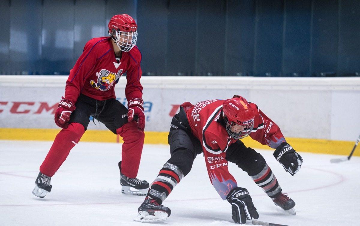 Adult hockey camp Iceberg